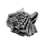 Переводная тату «Голова тигра»