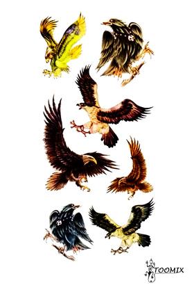 Переводная тату «Парящий орел»
