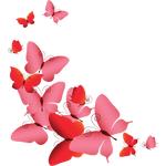 """Переводная татуировка """"Розовые бабочки"""""""