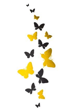 "Флеш тату ""Бабочки"""